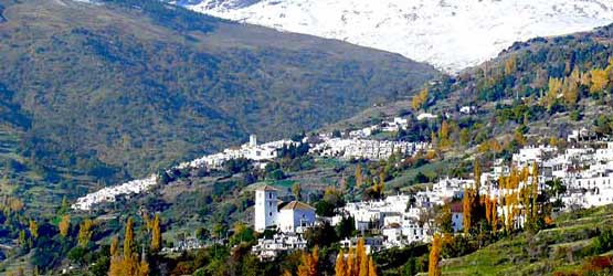 Alpujarra of Granada Tours